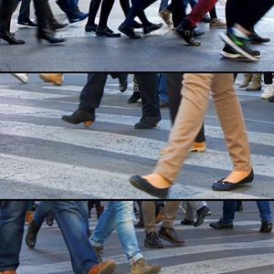 Red de Ciudades que Caminan